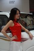 2009上海车展长丰车模
