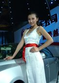 2009上海车展 东风车模