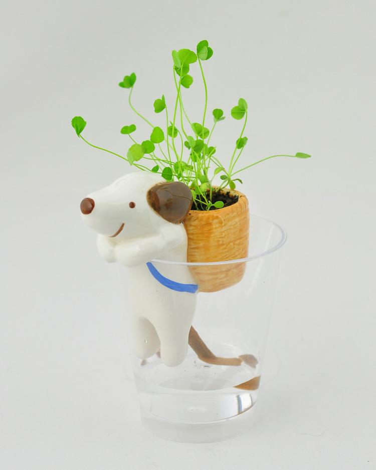 来自日本shippon一款恬静的小礼物,动物尾巴吸水盆栽,陶瓷做成的可爱小动物,将他们趴在杯子的边沿上,在杯子中加上水,就能变成一个小巧的供水系统,水源会顺着尾巴进入背篓,让种子发芽、开花,变成漂亮的桌上盆栽。