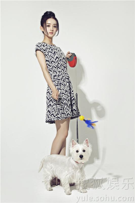 赵丽颖携宠物拍写真 可爱形象将呆萌进行到底