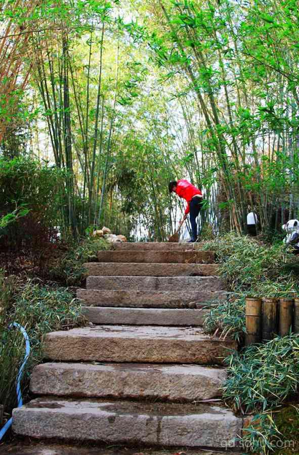搜狐青岛 新闻  责编:姜丰华                青岛世园会植物馆:奇妙