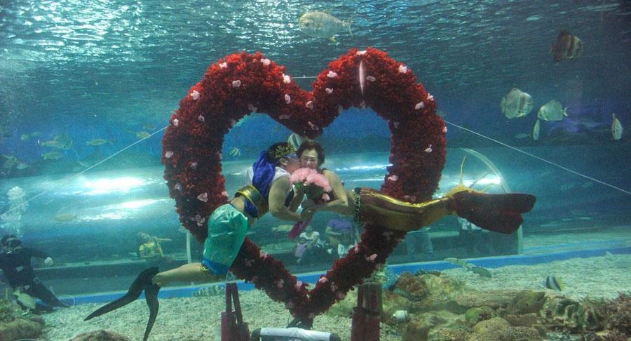 图为潜水员扮成扮成海神波塞冬的样子,亲吻美人鱼.