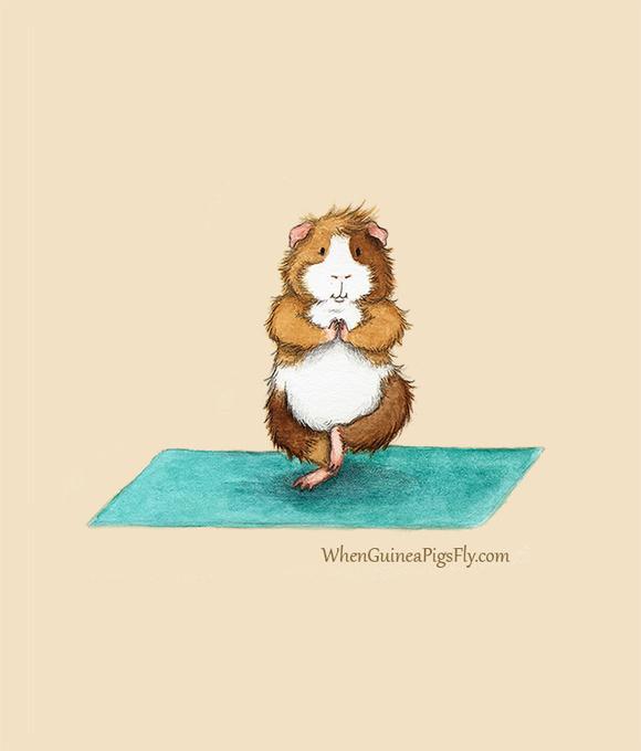 仓鼠是一个喜欢做瑜伽的好孩子