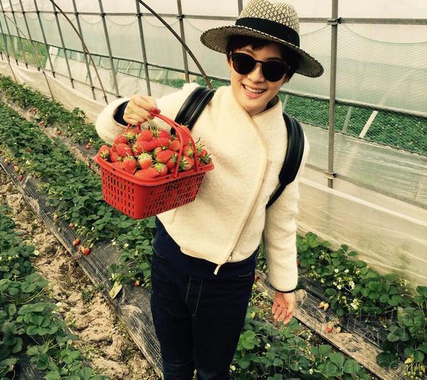 孙俪带儿子采摘 草莓姑娘叹时间过得快