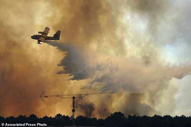 葡萄牙森林火灾:官方否认有飞机坠毁