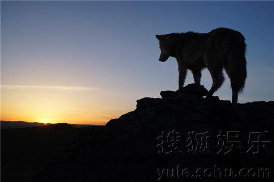 《狼图腾》首发预告版海报 冯绍峰带病坚持拍戏