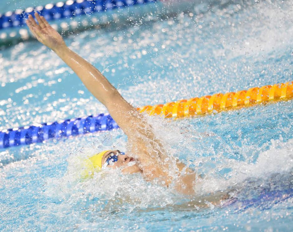 游泳 游泳動態圖片