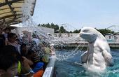 据法新社7月21日报道,随着暑假的到来,日本神奈川县横滨市的八景岛海洋乐园20日举办了一项特别活动,...