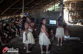 高清图:无处不足球 玛瑙斯土著围观巴西队比赛