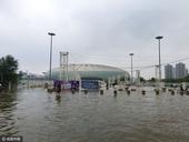 高清:泰达比赛因暴雨延期 水滴球场成水中之滴