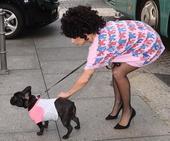 搜狐娱乐讯  近日,ladygaga现身德国柏林,身着长款粉红T恤的她展现卡哇伊一面,俯身逗爱犬不惧...