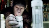 《猩球崛起》曝高清剧照:人猿大战备受期待