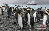 大师访谈之陈茂盛——南北极风光