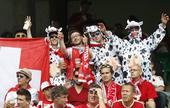 高清图:瑞士球迷变污妖王 奶牛穿上身搞怪卖萌