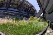 巴西圣地仅5个月变废楼 墙皮剥落杂草丛生(图)