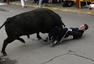 组图:西班牙斗牛节出意外 男子大腿被公牛刺破