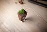木制饰品:指尖上的一份夏日之清净