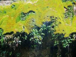水银河风景区